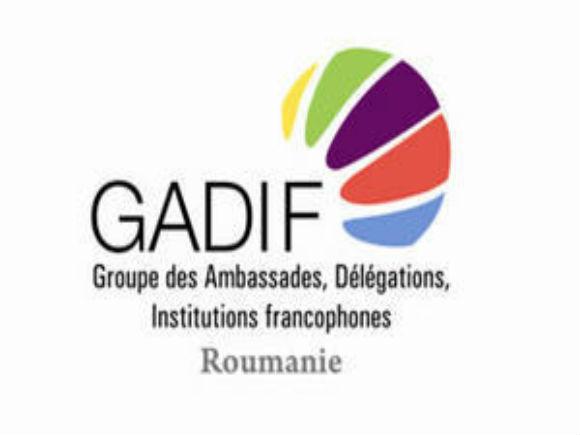 Muzeul Colecţiilor de Artă a primit distincţia GADIF