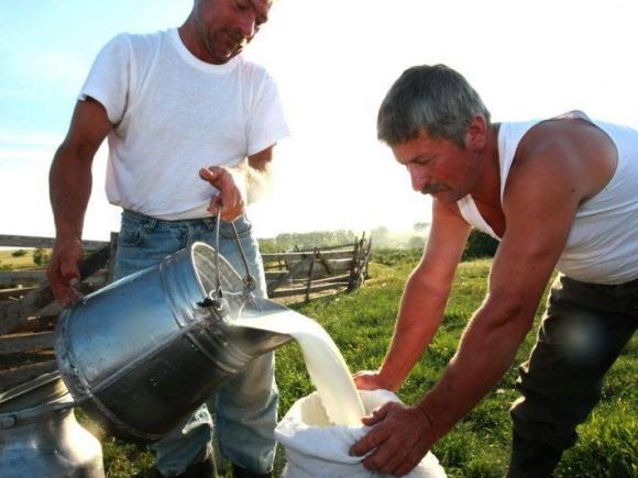 Constantin, despre scandalul aflatoxinei: Marii producători de lapte nu au înregistrat pierderi