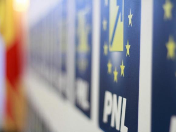 PNL a cerut în plen demisia lui Tăriceanu din funcţia de preşedinte al Senatului