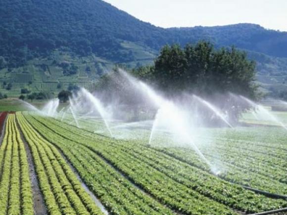 Ministerul Agriculturii: Căutăm o variantă pentru a aloca anual 145 mil. euro sistemului de irigaţii, timp de şapte ani