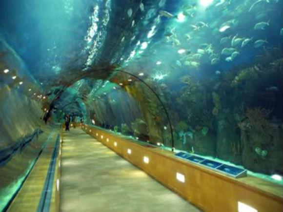 China intenţionează să construiască cel mai lung tunel subacvatic din lume