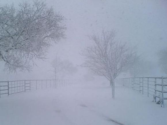 ANM ar putea emite cod roşu de ninsori pentru şase judeţe din sud-estul ţării